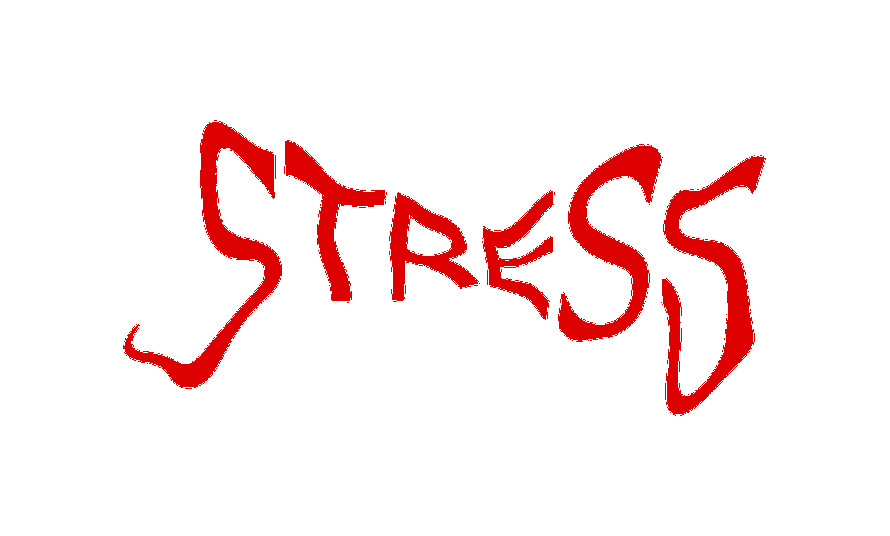 stress definizione
